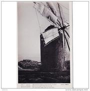 BLARSTP3295-LFTMD9364TARMDV.Tarjeta PostalBALEARES.Edificios,campo.MOLINO Y VISTAS En IBIZA - Windmühlen