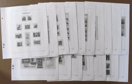 België / Belgique / Belgium - Davo LX - Supl. 2010 - 1a (279/281- B 133/141 - C 25,25a,25b,25c - CN 18) - Albums & Reliures