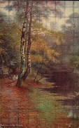 N°3419 QQQ LR RAPHAEL TUCK AND SONS OILETTE  HAPPY ENGLAND SERIES II  MC INTYRE AUTUMN IN THE WOODS - Tuck, Raphael