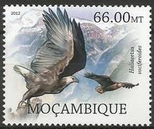 Mozambique 2012 - MNH - Madagascan Fisheagle ( Haliaeetus Vociferoides - Arends & Roofvogels