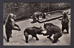 SWITZERLAND POSTCAR BERNE ZOO BEARS POSTED 1952 - BE Berne