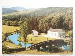 Postcard Vale Of Clara Co Wicklow Ireland My Ref B2858 - Wicklow