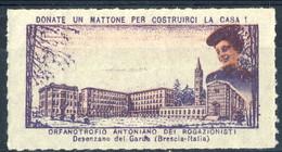 Erinnofili, Italia 1953, Desenzano Del Garda Orfanotrofio Antoniano Dei Rogazionisti - Italie
