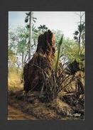AFRIQUE - AFRIQUE EN COULEURS - TERMITIÈRE EN BROUSSE - CLICHÉ P. CHARETON PAR IRIS - Cartes Postales