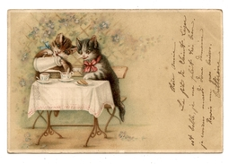 PETIT DEJEUNER EN TERRASSE.CHATS.CATS.KATZE.CAT.CHAT.      6893 - Chats