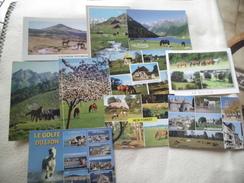 Lot De 10 Cartes  CHEVAUX - Cartes Postales