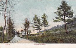 Ciney - La Route De Leignon (DTC, Dr Trenkler, Colorisée) - Ciney