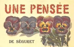 84 - VAUCLUSE / Fantaisie Moderne - CPM - Format 9 X 14 Cm - SEGURET - France