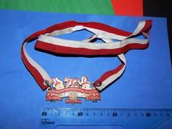 Huge ''Schutz'' Medal: PRINZENGARDE DER STADT RATINGEN, 2005. - Autres