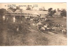 Entier CP 5c Belgisch Congo Belge N°36 C.Stanleyville En 1913 V.Bruxelles C.d'arrivée PR4330 - Entiers Postaux