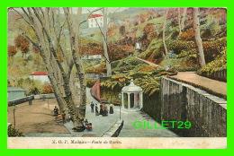 MADEIRA, PORTUGAL - M. O. P. - FONTE DO MONTE - - Madeira