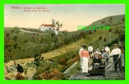 MADEIRA, PORTUGAL - DESCIDA DA MONTANHA - SLIDING FROM THE MOUNT - ANIMATED - - Madeira