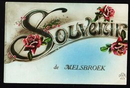 Melsbroek. Souvenir De Melsbroek. **** - Steenokkerzeel