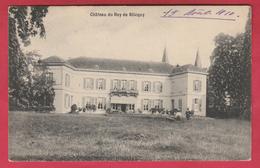 Blicquy - Château Du Roy - 1910  ( Voir Verso ) - Leuze-en-Hainaut