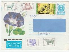 C] Entier Postal Stationery BULGARIE BULGARIA Animal Lion Fleur Flower - Bulgaria