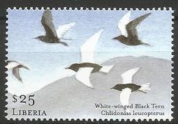 Liberia 2001 - MNH - White-winged Tern (Chlidonias Leucopterus) - Meeuwen