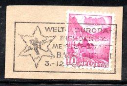 R1031 - SVIZZERA , Frammentino Con Annullo A Targhetta - Hockey (su Ghiaccio)