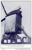 TERNAT (Vlaams-Brab.) - Molen/moulin - Blauwe Prentkaart Ons Molenheem Van De Gewezen Molen Van Sempst (naar Oude Foto) - Ternat