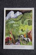 Histoire De La Belle Au Bois Dormant. - Old Paper