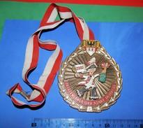 Huge ''Schutz'' Medal: PRINZENGARDE DER STADT DUISBURG 2000. 2 - Autres