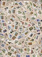 ##S1, Vrac, Canada, AUBAINE, DEAL, 140 G, Plus De 1000 Timbres, More Than 1000 Stamps - Timbres