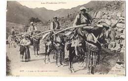 CPA ANIMEE MULETIERS D'ANDORRE - Andorra