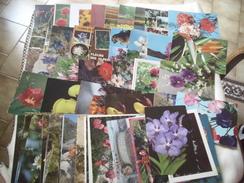 LOT DE 65 CARTES FLEURS - Cartes Postales