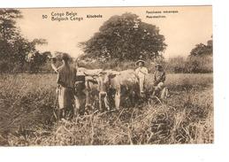 Entier CP 10c Belgisch Congo Belge N°50 C.Stanleyville En 1913 V.Bruxelles C.d'arrivée PR4335 - Entiers Postaux