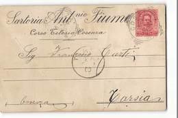 15369 012 SARTORIA FIUME COSENZA X TARSIA - Storia Postale