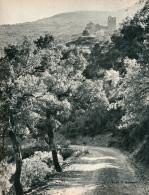 Photo (1965) : LE PRIEURE DE SERRABONE (Pyrénées-Orientales) Massif Du Canigou, Boule-d'Amont (20 Cm Sur 26,5 Cm) - Non Classificati