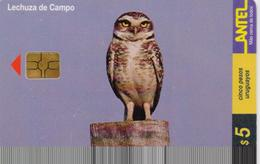 URUGUAY PHONECARD ANTEL(chip) BIRDS-Tc 112a-3/00-200000pcs-USED(bx1) - Gufi E Civette