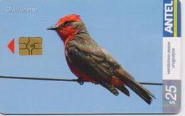 URUGUAY PHONECARD ANTEL(chip) BIRDS-Tc 329a-4/04-200000pcs-USED(bx1) - Passereaux