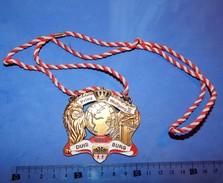 Huge ''Schutz'' Medal: PRINZ WOLFGANG III 2005. DUISBURG - Autres