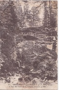 GERARDMER ( 88 )  Pont De La Grande Route Au Saut Des Cuves Sur La Vologne . - Gerardmer