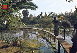 1 AK Marokko * Jardins Exotiques In Rabat * - Rabat