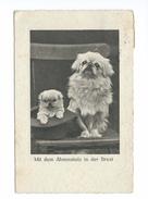 Mit Dem Ahnenstolz In Der Brust Chiens Hünde Dogs 1931 - Hunde