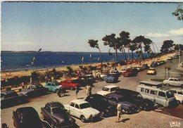 ARCACHON  / LOT 1480 - Voitures De Tourisme
