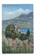 Meggen Schloss Habsburg Mit Rigi 1929 - LU Lucerne