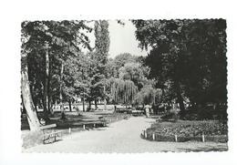 Siofok Part Of The Park - Hongrie