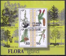ESLOVENIA 1998 HB-7 USADO PRIMER DIA - Eslovenia