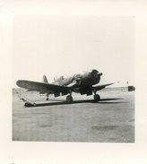 Avion Militaire En Algérie - 3 Photos 72 X 77 Mm