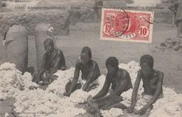 SOUDAN          Travail  Du Coton Indigéne  -L'Egrenage    SUPER PLAN  1907 - Sudan