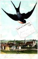 Gruss Aus LOEWENBERG    (Recto/Verso) - Böhmen Und Mähren