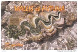 WALLIS Et FUTUNA - Le Benitier(no Number), Tirage 3500, 07/09, Used - Wallis And Futuna