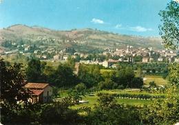 1-TRAVERSETOLO(PARMA)PANORAMA - Parma