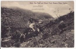 CEYLON, Nanu Oya Pass And Black Pool, Nuwara Eliya, 1910s Vintage Postcard, CEYLAN - SRI LANKA - Sri Lanka (Ceylon)