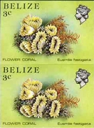 BELIZE 1984 Flower Coral 3c IMPERF.PAIR [non Dentelé,Geschnitten,no Dentado] - Maritiem Leven