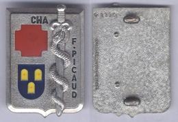 Insigne Du Centre Hôspitalier Des Armées - C.H.A  F. Picaud - Services Médicaux