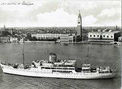 Shipping RP Postcard Adriatica MS Messapia Venice Passenger Cargo Ship - Cargos