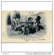 FRATP0849CPA-LFTMD7089TAPERR.Tarjeta Postal DE FRANCIA.Transporte De Leche En CARRO De PERROS.CCLD - Perros